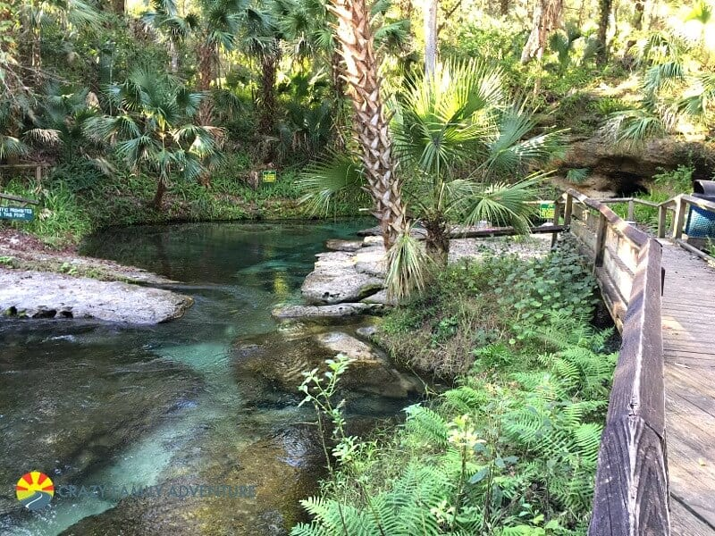 Kelly Rock Spring - one of the best places to visit in Florida