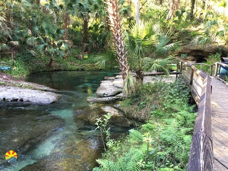 Kelly Rock Spring: l'un des meilleurs endroits à visiter en Floride