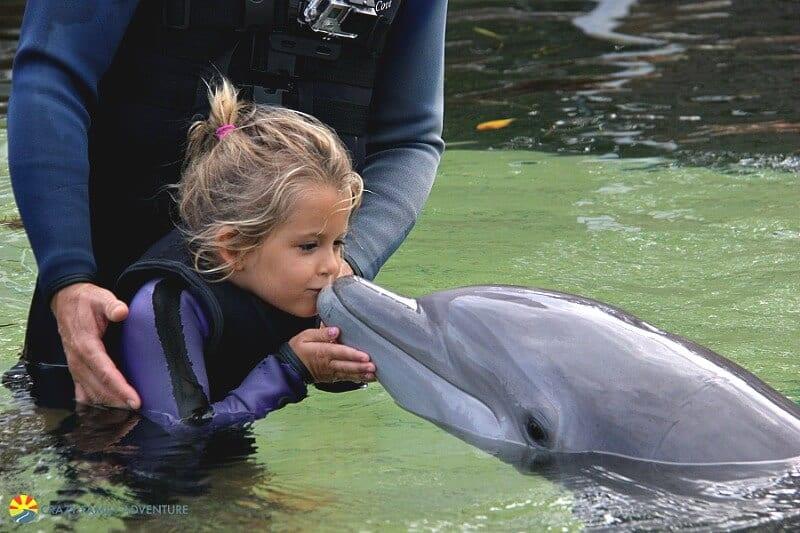 Dolphins Plus, Florida Keys