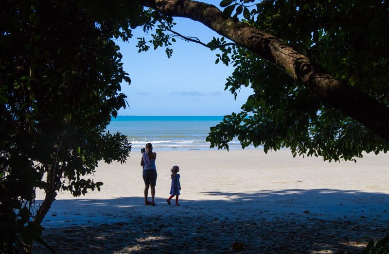 Cape Tribulation Beach - Daintree Rainforest, Queensland, Australia