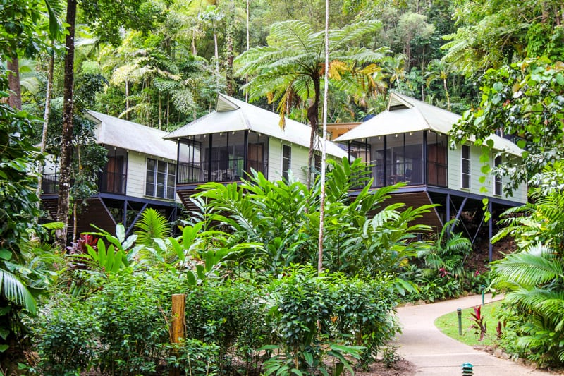 Daintree Eco Lodge & Spa in the Daintree Rainforest of Queensland, Australia