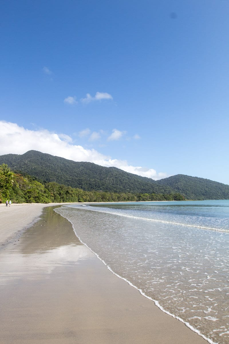 Take a walk along Cape Tribulation Beach in the Daintree Rainforest, Queensland, Australia