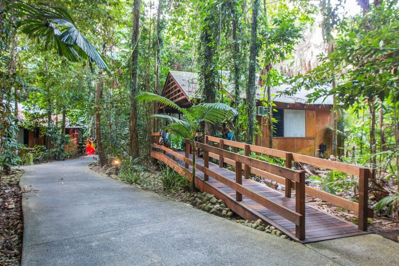 Cape Trib Beach House - Cape Tribulation, Daintree Rainforest, Queensland, Australia