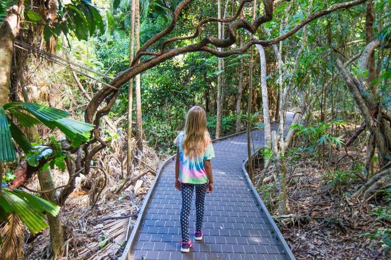 Dubuji Boardwalk - Daintree Rainforest, Queensland, Australia