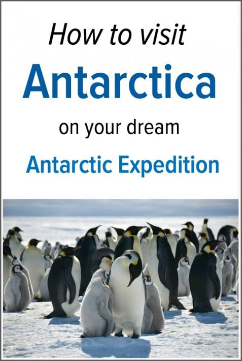 Is visiting Antarctica on your bucket list? Here's how you can take your dream Antarctic Expedition