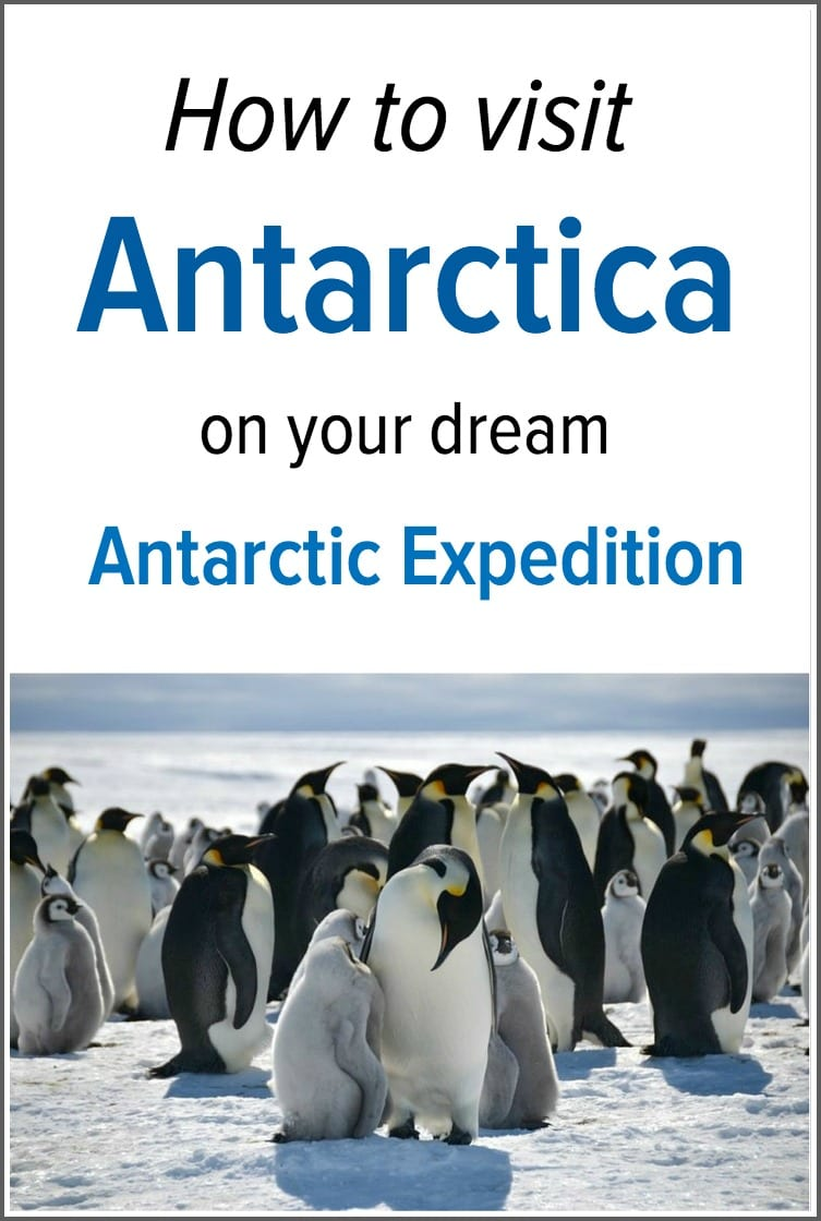 How to visit antarctica on a ross sea antarctic expedition for Can you visit antarctica