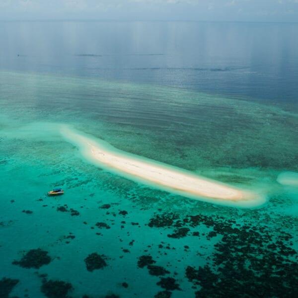 Mackay Reef - Great Barrier Reef, Australia