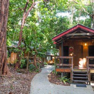 Cape Trib Beach House - Daintree Rainforest, Australia