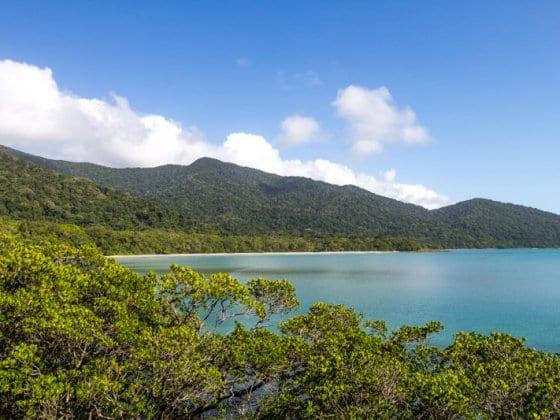 Kulki Lookout - Cape Tribulation, Daintree Rainforest