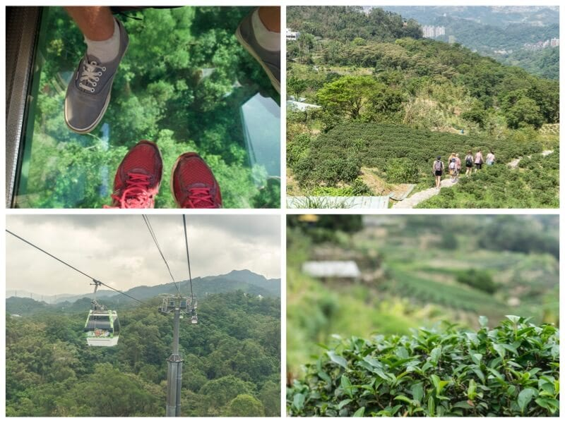 Maokang Gondola Tea is one of the best things to do in Taiwan with kids. Click to read more Taiwan travel tips