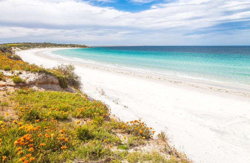 Port Neil on the EAst Coast of the Eyre Peninsula is a good stopover on your road trip with kids in South Australia. Click to read more tips on things to do on the Eyre Peninsula