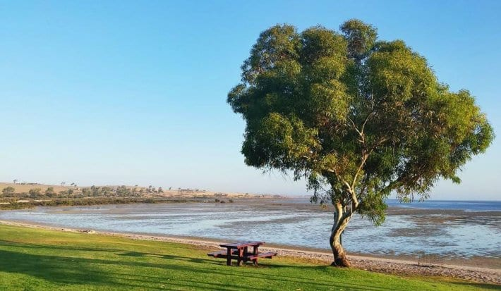 Streaky Bay is a must stop on your road trip with kids in South Australia. Click to read more tips on things to do on the Eyre Peninsula