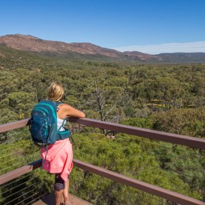 Wangarra Lookout is a great hike to do with kids in Wilpena Pound. The Ikara Flinders Ranges National Park is one of the best places to visit in Australia. It has plenty of great hikes for kids. Click to read more about this beautiful region to visit in South Australia.
