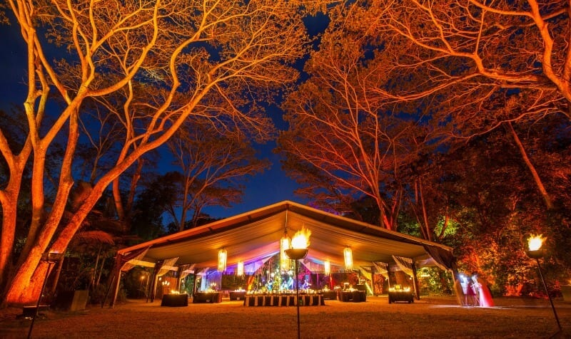 Flames of the Forest - unique dining experience in Port Douglas, Queensland
