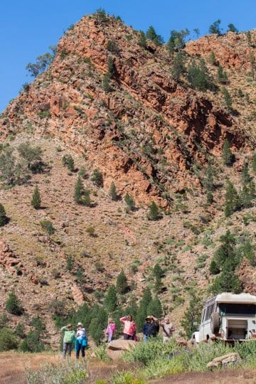 Brachina Gorge in the The Ikara Flinders Ranges National Park is one of the best places to visit in Australia. It has plenty of great hikes for kids. Click to read more about this beautiful region to visit in South Australia.