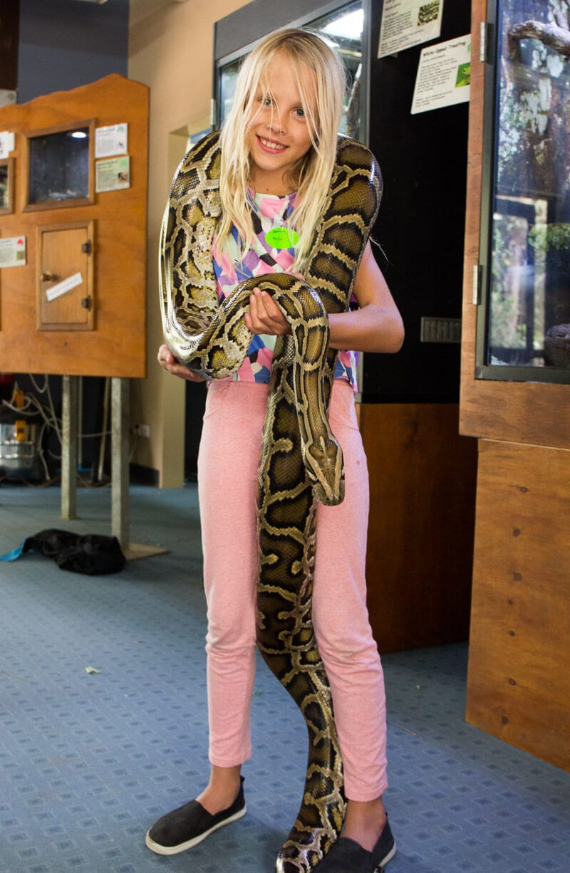 Yes, you can hold a Burmese python at Hartley's Crocodile Adventures in Port Douglas, Queensland, Australia