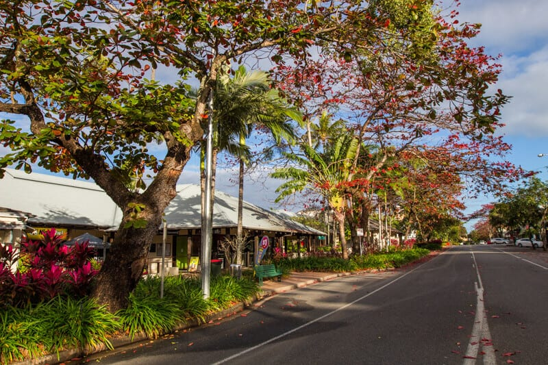 Colorful and vibrant Macrossan Street in Port Douglas, Queensland
