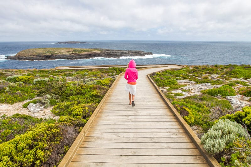 Admiral's Arch in the Flinders Chase National Park is a highlight of a road trip to Kangaroo Island. Click to read more
