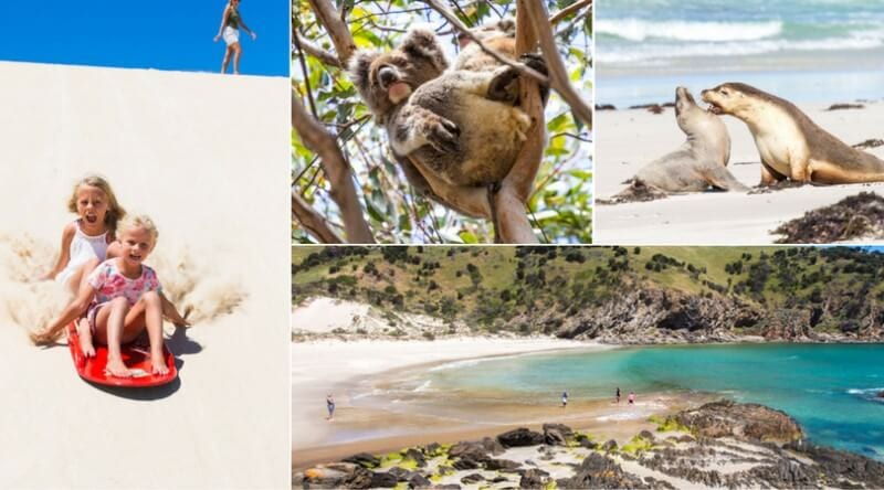Highlights of a Kangaroo Island road trip in South Australia