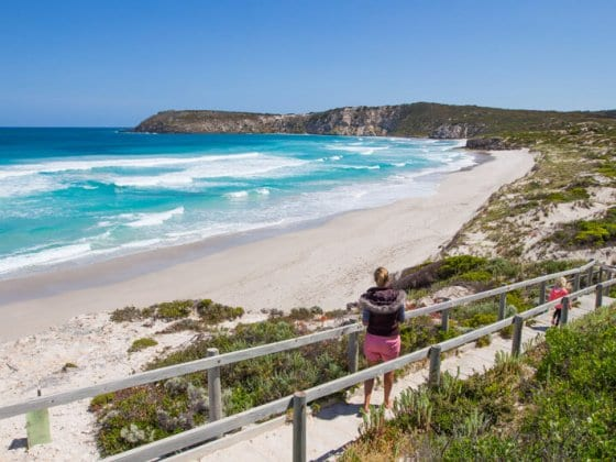 Highlights of 4 Day Kangaroo Island Road Trip