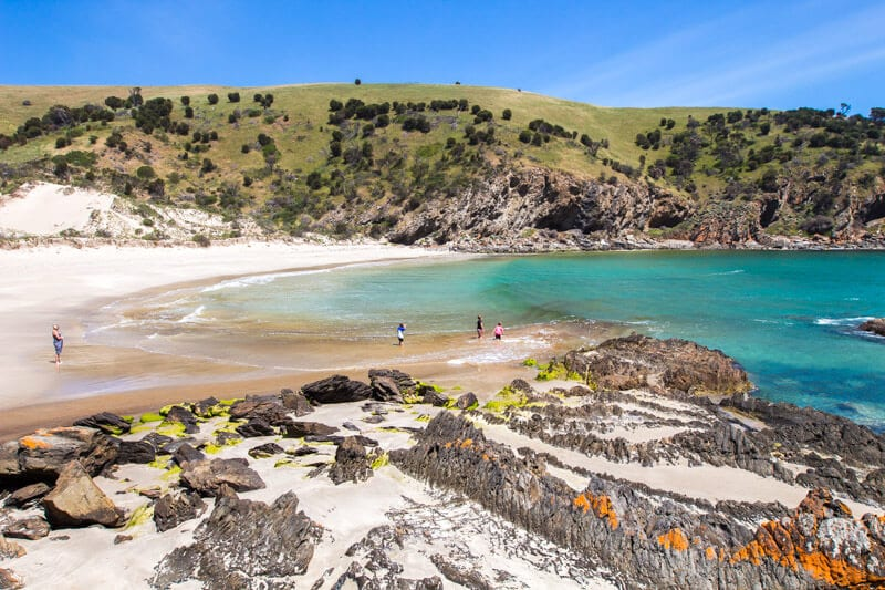 Western River Cove is one of the best beaches on Kangaroo Island. Click to read more tips