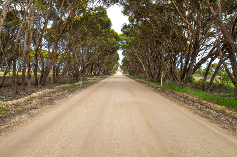 getting around Kangaroo Island on a road trip