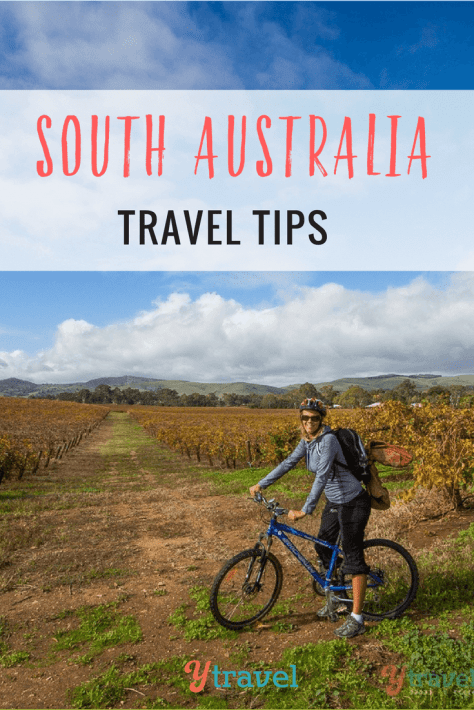 Looking for South Australia travel tips? Check out these tips on Adelaide, Barossa Valley, Flinders Ranges National Park, the Eyre Peninsula and more!