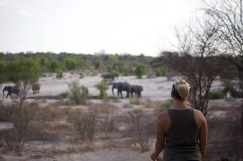 Watching elephants is one of the best things to do in Botswana