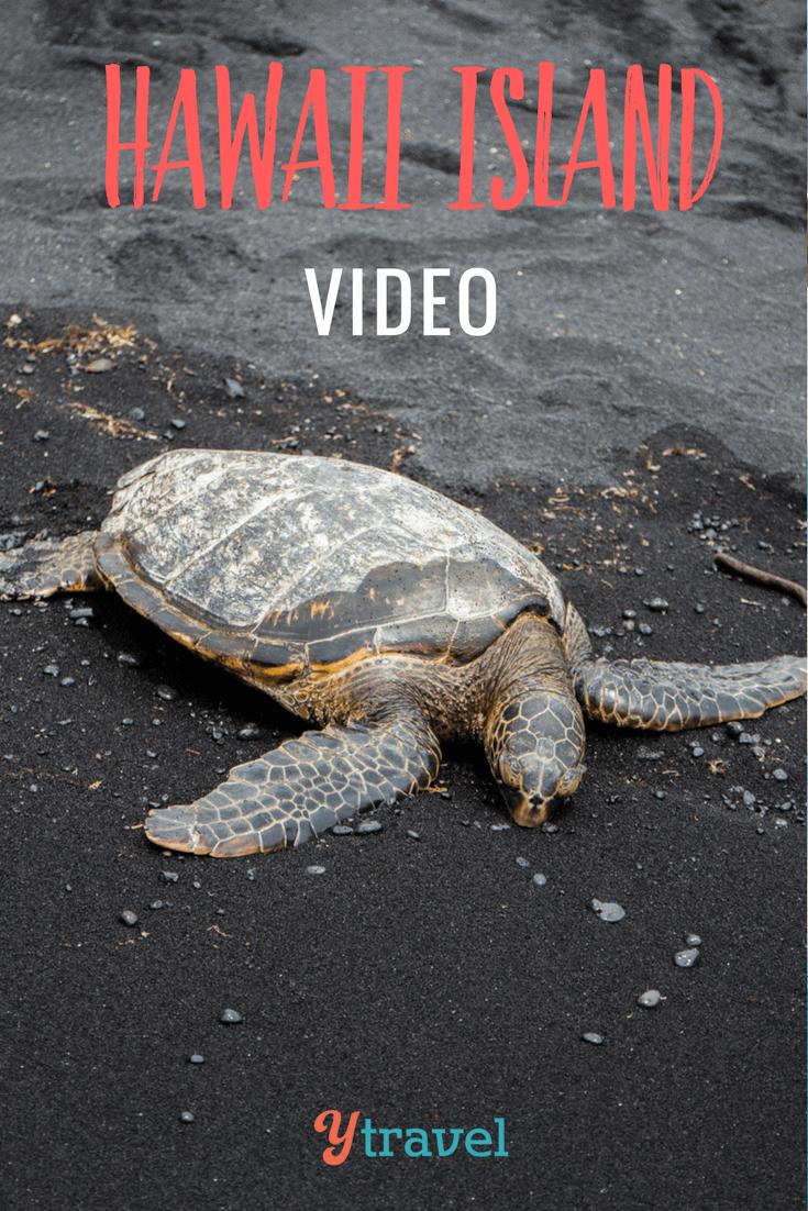 Hawaii Video 3 – Punalu'u Black Sand Beach and Swimming with Manta Rays