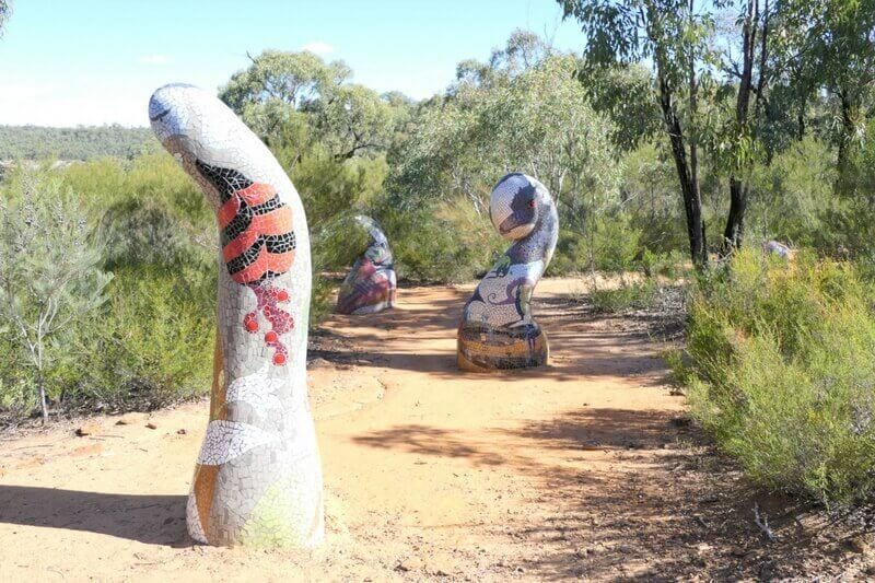 6 captivating things to do in Coonamble and the Pilliga in NSW