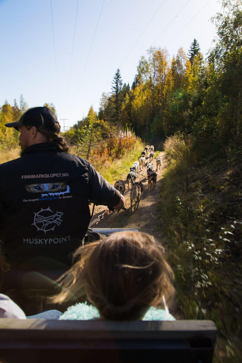 Learning about husky racing is another fun thing to do in Finland no matter what time of year.