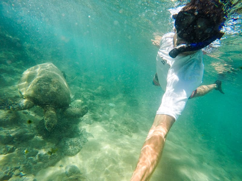 Snorkeling with turtles at Black Rock Beach in Maui