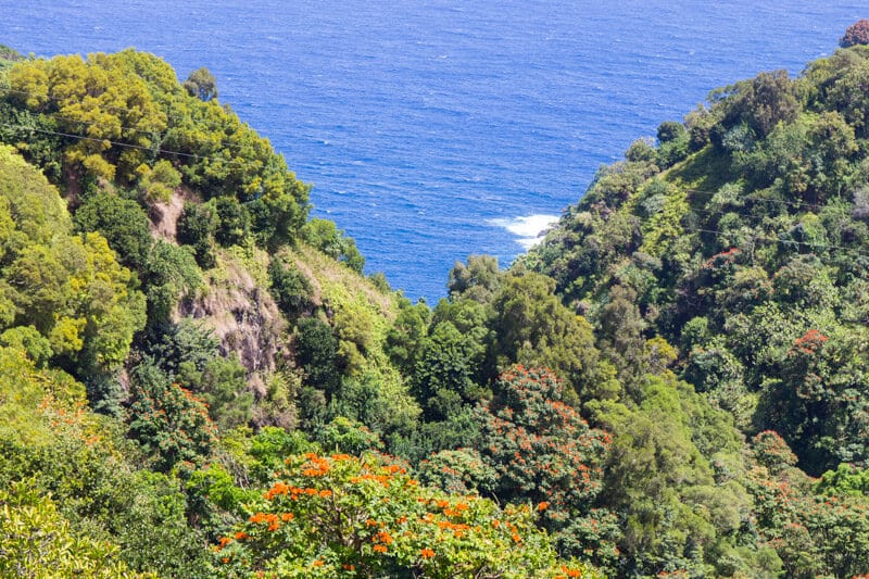 Garden of Eden on the Road to Hana drive in Maui, Hawaii