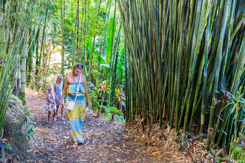 Walking through Bamboo Alley in the Garden of Eden along the Road to Hana drive in Maui, Hawaii