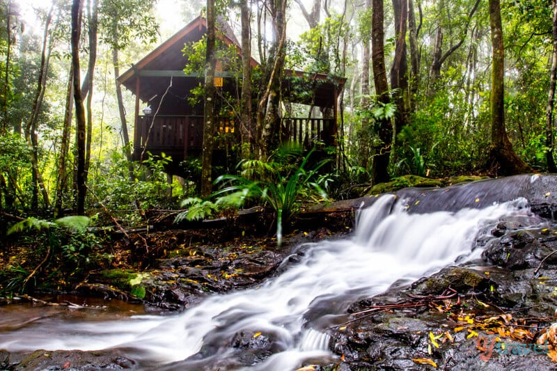 The Mouses House Rainforest Retreat - Gold Coast Hinterland Accommodation, Queensland, Australia