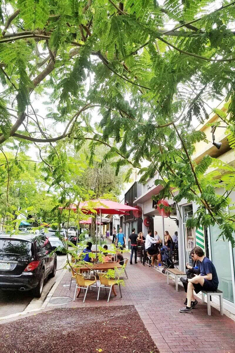 24 Hours In Miami A Relaxed Neighborhood Experience In Coconut Grove