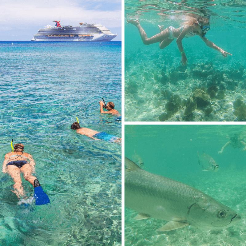 Snorkeling at Marine Park on Grand Caymans