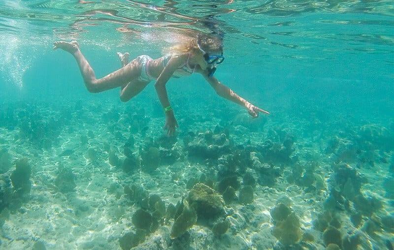 snorkelling Grand Cayman Island