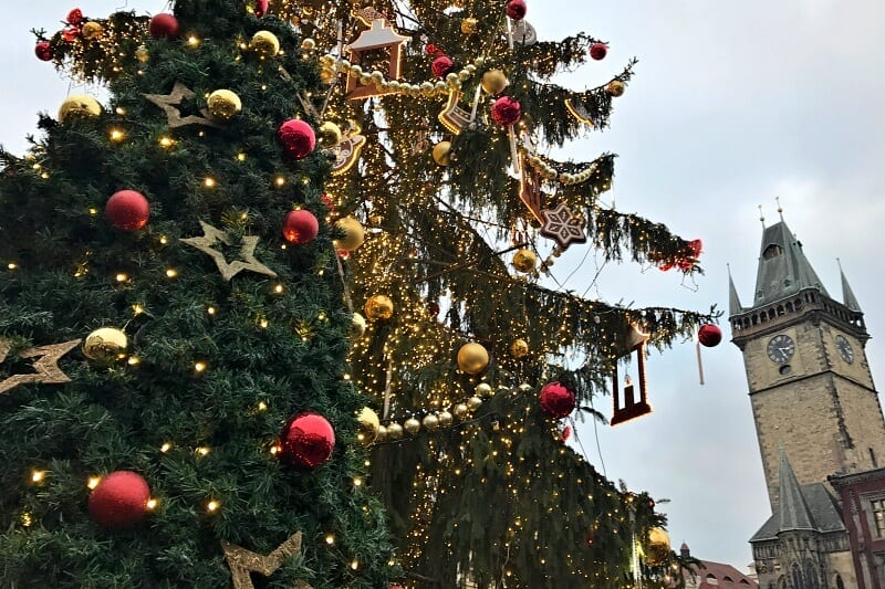 Christmas trees in Old Town Square, Prague