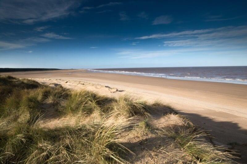 Sand dunes at Holkham Beach Norfolk Coast British Isles UK (800 x 532)