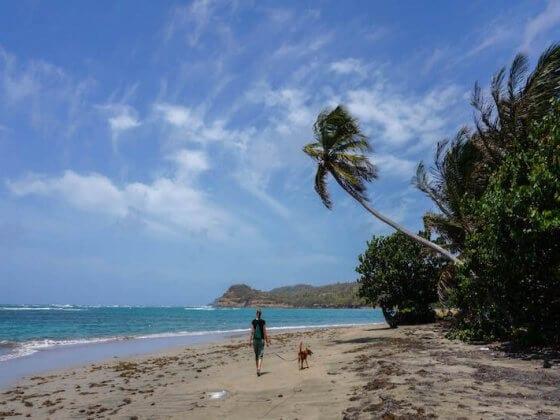 Grenada Beach - Caribbean Island hopping destinations