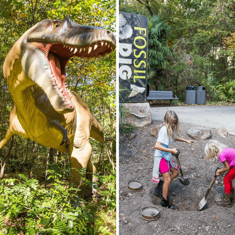 Awesome dinosaur display at the Museum of Life & Science in Durham, North Carolina. #Dinosaur #Museum #Durham #NorthCarolina