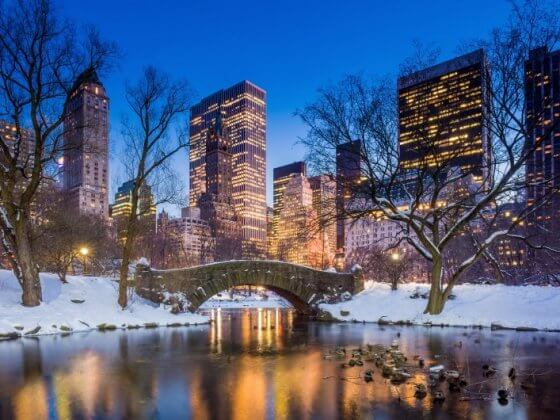 New York City the perfect winter vacation for families in the USA