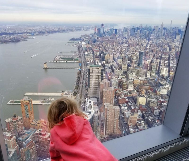 One World Observatory views Freedom Tower NYC