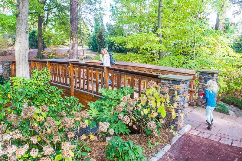 Duke Gardens, Durham North Carolina
