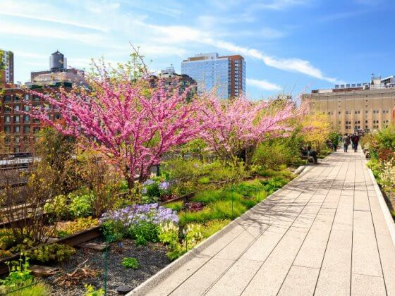 New York highline NYC attractions