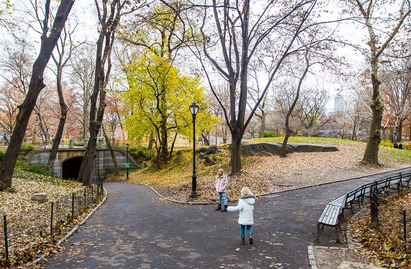 Explore Central Park - one of the best things to do in NYC with kids