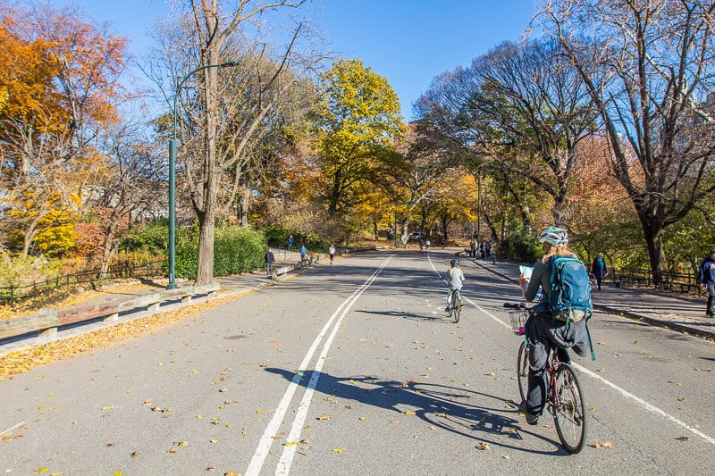 Exploring Central Park by Bike - one of the best things to do in NYC with kids