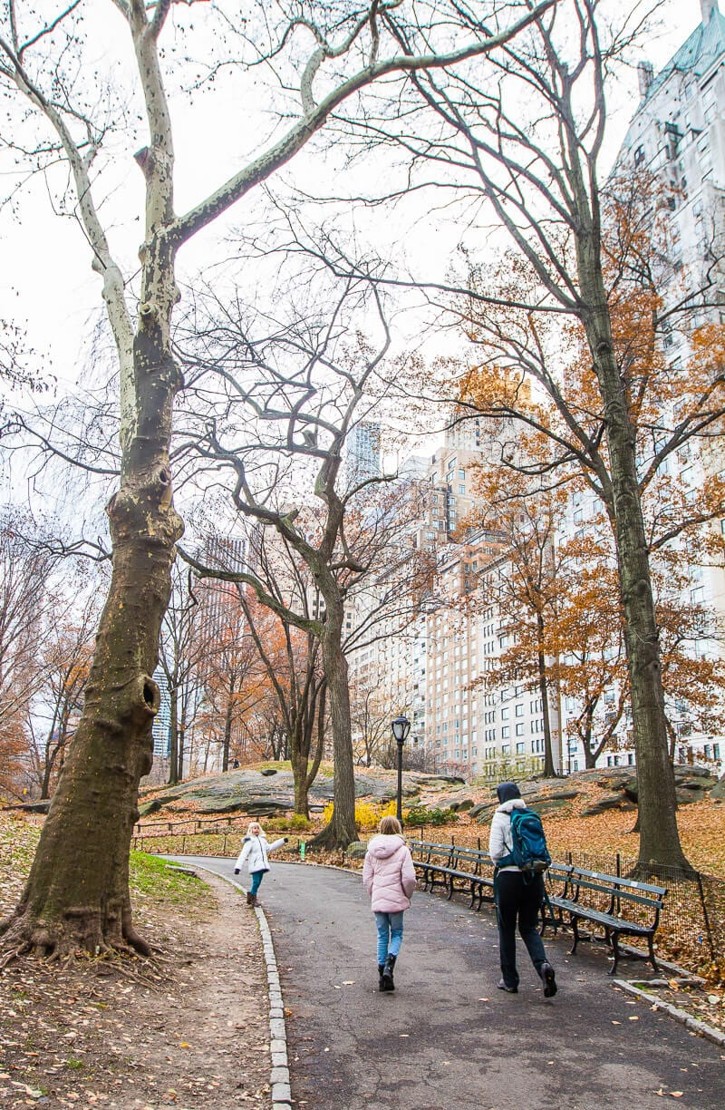 Walking in Central Park - one of the best things to do in NYC with kids