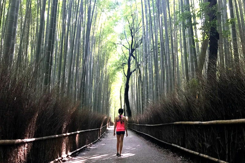 Bamboo Groves in Arashiyama, Kyoto